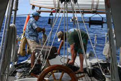 Coiling the array for whale monitoring