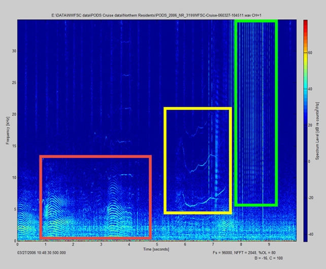 Spectrogram with boxes showing different calls